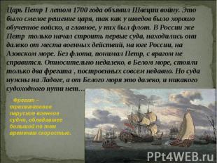 Царь Петр 1 летом 1700 года объявил Швеции войну. Это было смелое решение царя,