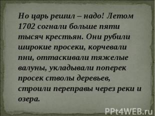 Но царь решил – надо! Летом 1702 согнали больше пяти тысяч крестьян. Они рубили