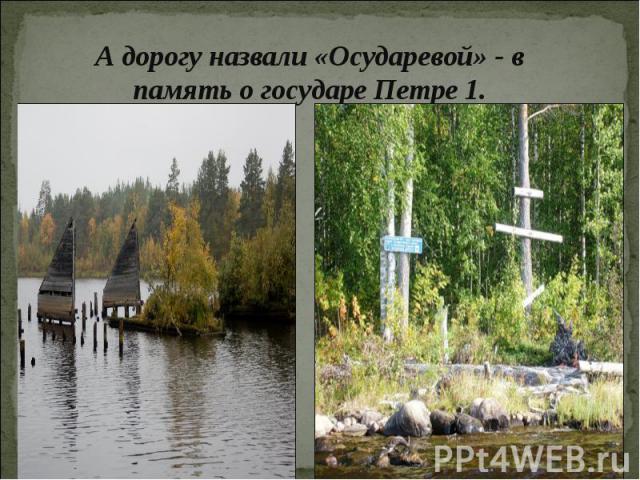 А дорогу назвали «Осударевой» - в память о государе Петре 1.