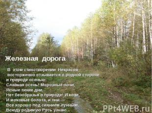 Железная дорога В этом стихотворении Некрасов восторженно отзывается о родной ст