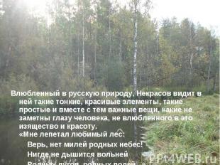 Влюбленный в русскую природу, Некрасов видит в ней такие тонкие, красивые элемен
