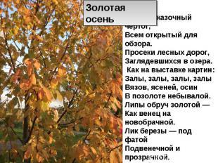 Золотая осень Осень. Сказочный чертог, Всем открытый для обзора. Просеки лесных