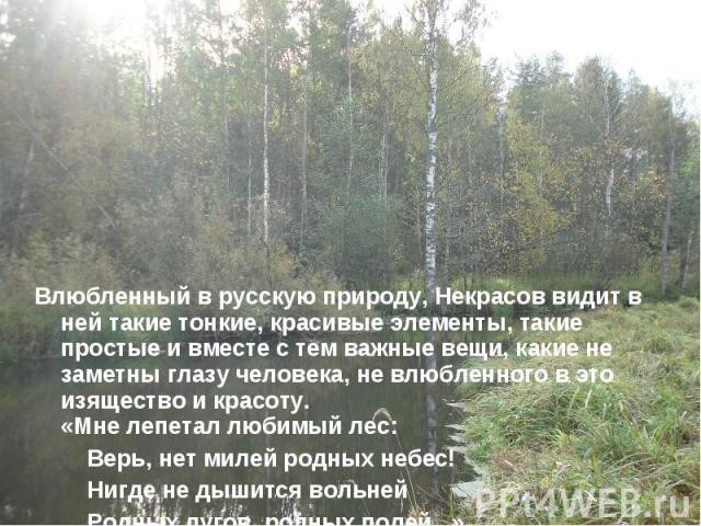 Влюбленный в русскую природу, Некрасов видит в ней такие тонкие, красивые элементы, такие простые и вместе с тем важные вещи, какие не заметны глазу человека, не влюбленного в это изящество и красоту. «Мне лепетал любимый лес: Верь, нет милей родных…