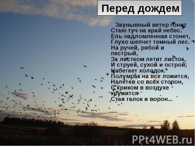 Перед дождем Заунывный ветер гонит Стаю туч на край небес. Ель надломленная стонет, Глухо шепчет темный лес. На ручей, рябой и пестрый, За листком летит листок, И струей, сухой и острой; Набегает холодок. Полумрак на все ложится, Налетев со всех сто…