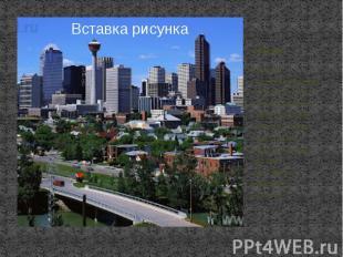 Калгари Калгари -крупнейший город Альберты. Также Калгари является самым молодым