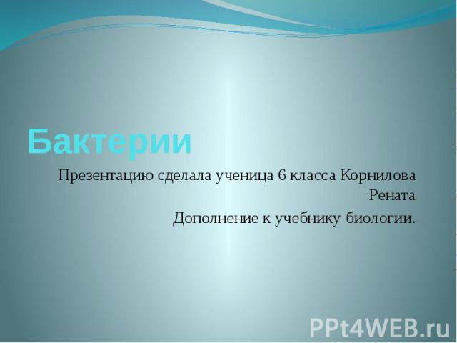 Бактерии Презентацию сделала ученица 6 класса Корнилова Рената Дополнение к учебнику биологии.