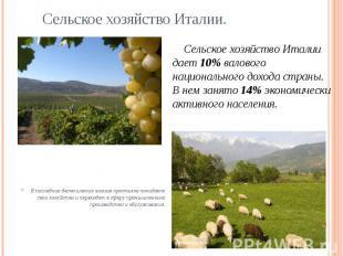 Сельское хозяйство Италии. Сельское хозяйство Италии дает 10% валового националь