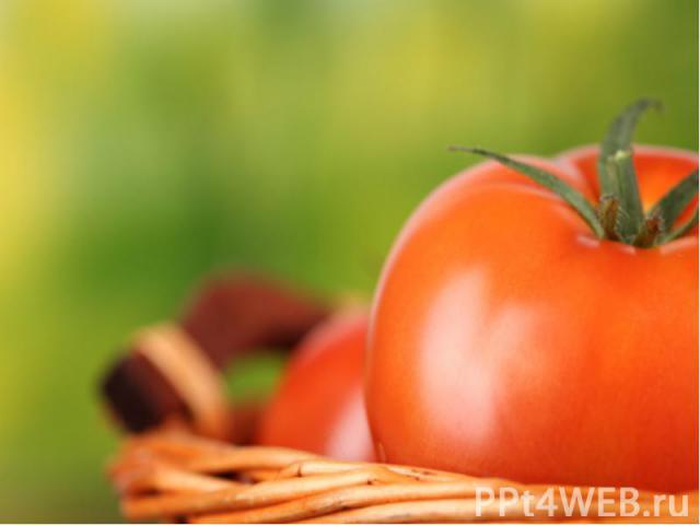 Картофель сажают во многих районах страны, но более всего в Кампании. В Италии выращивают различные овощи: помидоры, капусту, салаты, лук, спаржу, бахчевые культуры. Главный овощеводческий район страны также Кампания. Важнейшей технической культурой…