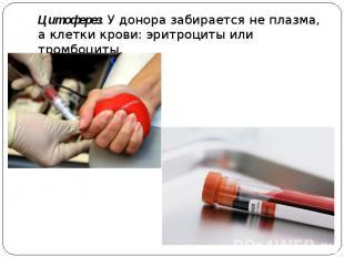 Цитоферез. У донора забирается не плазма, а клетки крови: эритроциты или тромбоц