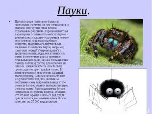 Пауки. Пауки по ряду признаков близки к насекомым, но четко от них отличаются, и