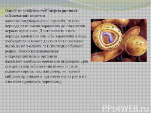 Одной из особенностейинфекционных заболеванийявляется наличиеинкубационного п