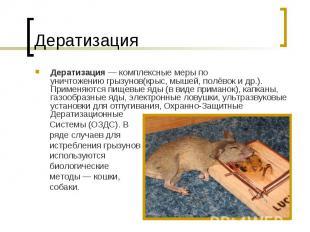 Дератизация — комплексные меры по уничтожениюгрызунов(крыс,мышей,полёвоки др