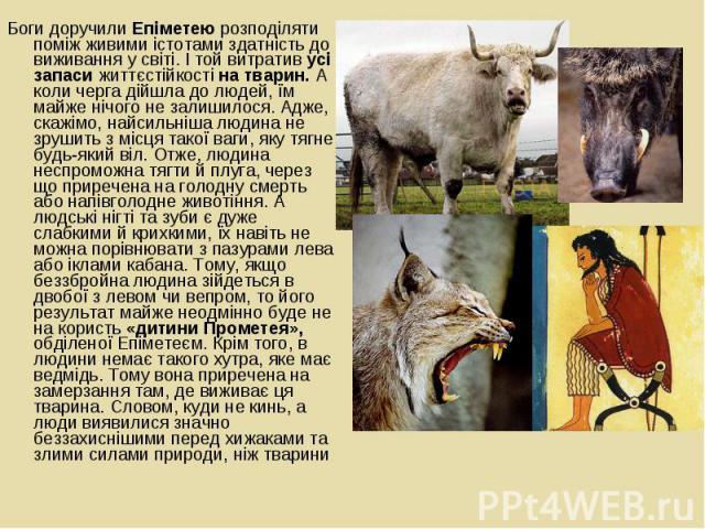 Боги доручили Епіметею розподіляти поміж живими істотами здатність до виживання у світі. І той витратив усі запаси життєстійкості на тварин. А коли черга дійшла до людей, їм майже нічого не залишилося. Адже, скажімо, найсильніша людина не зрушить з …
