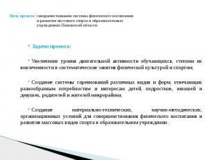 Цель проекта: совершенствование системы физического воспитания и развитие массов