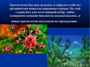Протоклетки быстрее делились и забрали в себя все органические вещества первично