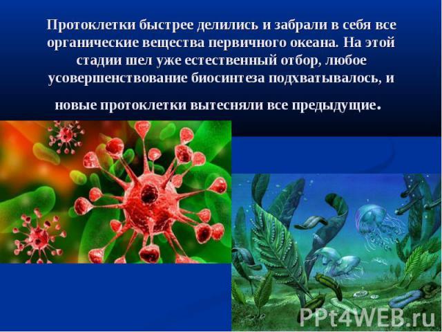 Протоклетки быстрее делились и забрали в себя все органические вещества первичного океана. На этой стадии шел уже естественный отбор, любое усовершенствование биосинтеза подхватывалось, и новые протоклетки вытесняли все предыдущие.
