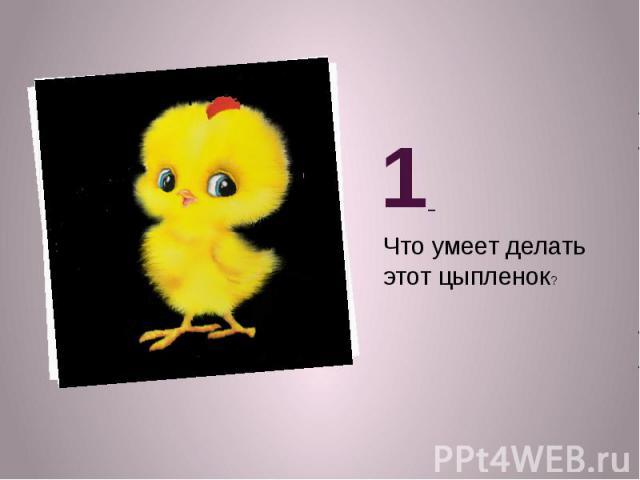 1 Что умеет делать этот цыпленок?