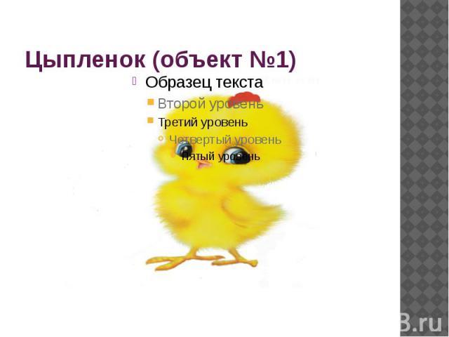Цыпленок (объект №1)