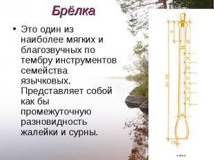 Это один из наиболее мягких и благозвучных по тембру инструментов семейства языч