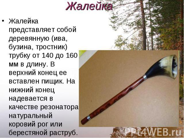 Жалейка представляет собой деревянную (ива, бузина, тростник) трубку от 140 до 160 мм в длину. В верхний конец ее вставлен пищик. На нижний конец надевается в качестве резонатора натуральный коровий рог или берестяной раструб. Жалейка представляет с…