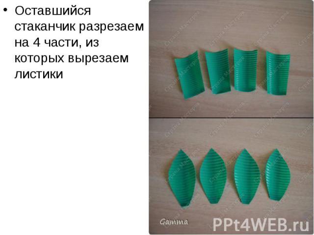 Оставшийся стаканчик разрезаем на 4 части, из которых вырезаем листики Оставшийся стаканчик разрезаем на 4 части, из которых вырезаем листики