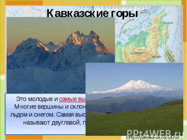 Это молодые и самые высокие горы России (до 5000 м). Многие вершины и склоны этих гор постоянно покрыты льдом и снегом. Самая высокая гора – Эльбрус (5642 м). Её называют двуглавой, потому что у неё 2 вершины. Это молодые и самые высокие горы России…