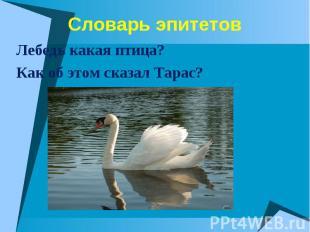 Лебедь какая птица? Лебедь какая птица? Как об этом сказал Тарас?