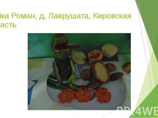 Чайка Роман, д. Лаврушата, Кировская область