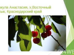Ганжула Анастасия, х.Восточный Сосык, Краснодарский край