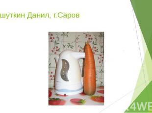 Гришуткин Данил, г.Саров