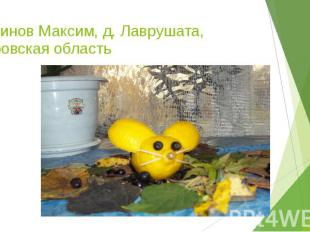 Косинов Максим, д. Лаврушата, Кировская область