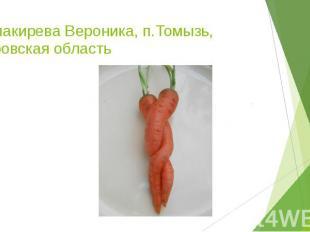 Балакирева Вероника, п.Томызь, Кировская область
