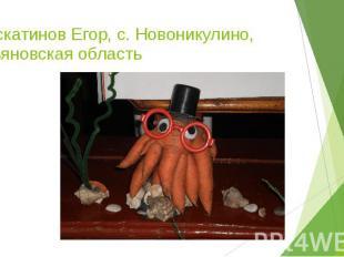 Мускатинов Егор, с. Новоникулино, Ульяновская область