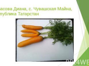 Тарасова Диана, с. Чувашская Майна, республика Татарстан