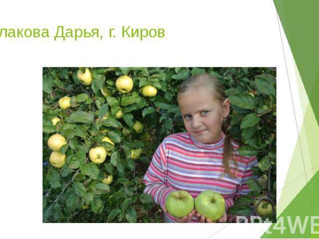 Чеглакова Дарья, г. Киров