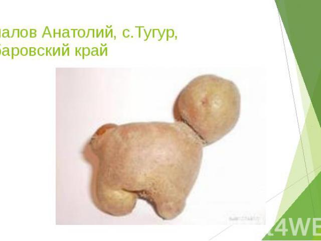Чепалов Анатолий, с.Тугур, Хабаровский край