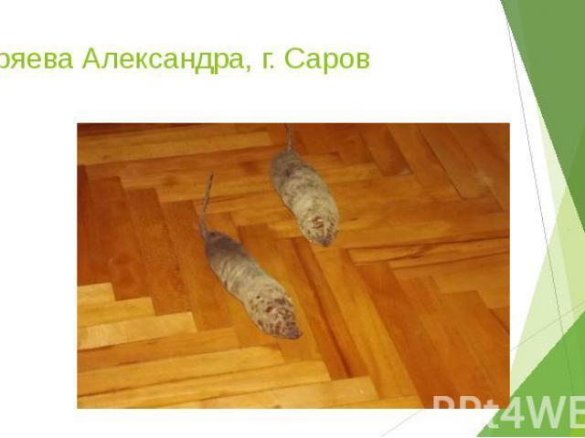 Ширяева Александра, г. Саров