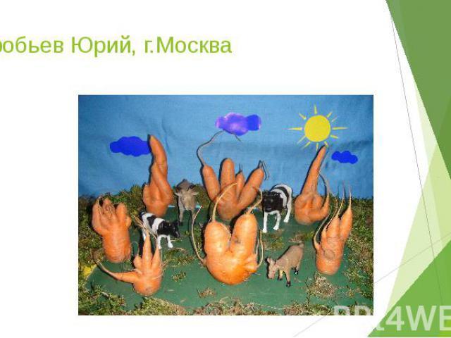 Воробьев Юрий, г.Москва