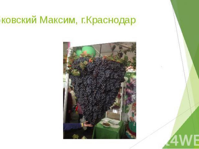 Дубковский Максим, г.Краснодар