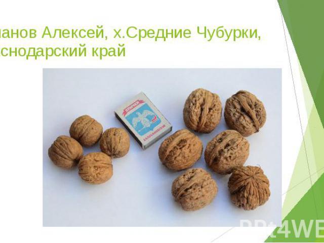 Евланов Алексей, х.Средние Чубурки, Краснодарский край