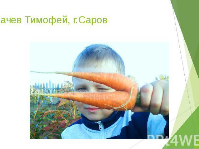 Калачев Тимофей, г.Саров