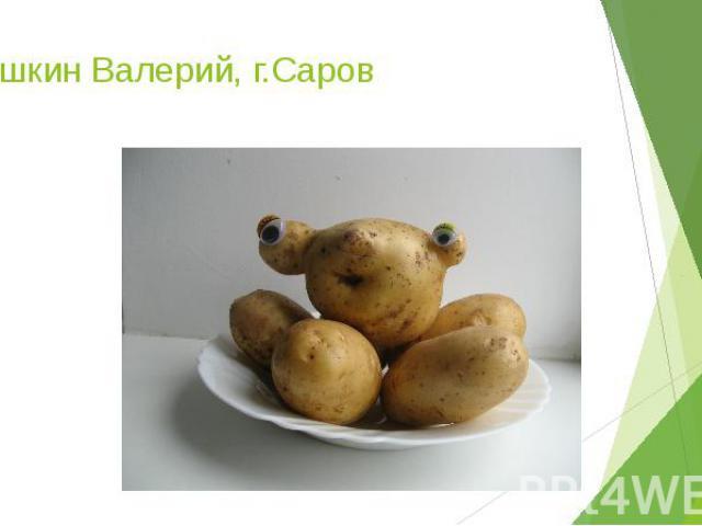 Киушкин Валерий, г.Саров