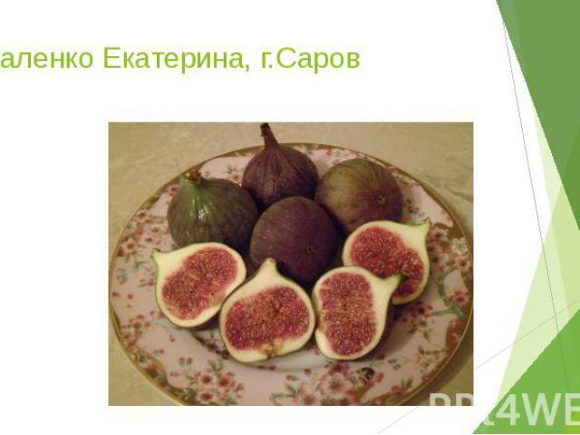 Коваленко Екатерина, г.Саров