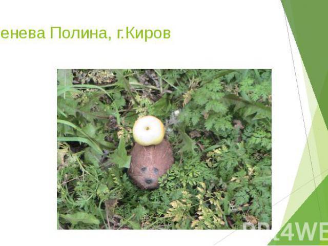 Коренева Полина, г.Киров