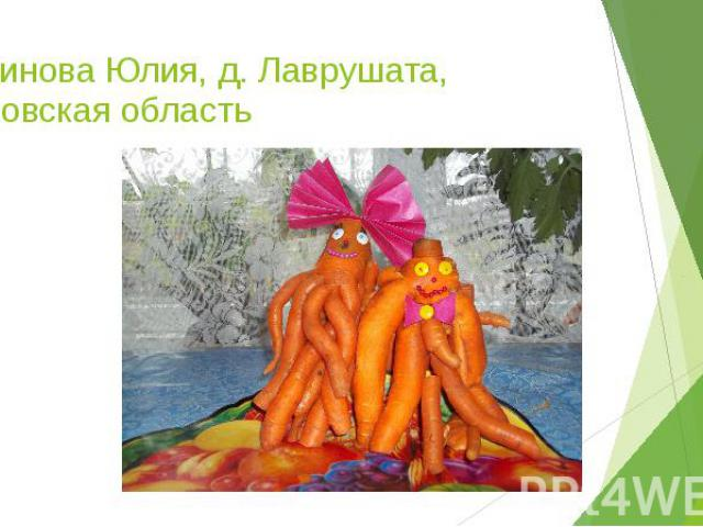 Косинова Юлия, д. Лаврушата, Кировская область