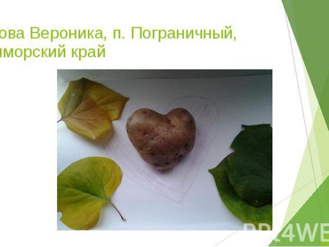 Котова Вероника, п. Пограничный, Приморский край
