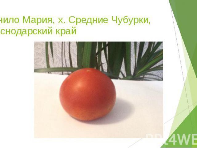 Манило Мария, х. Средние Чубурки, Краснодарский край
