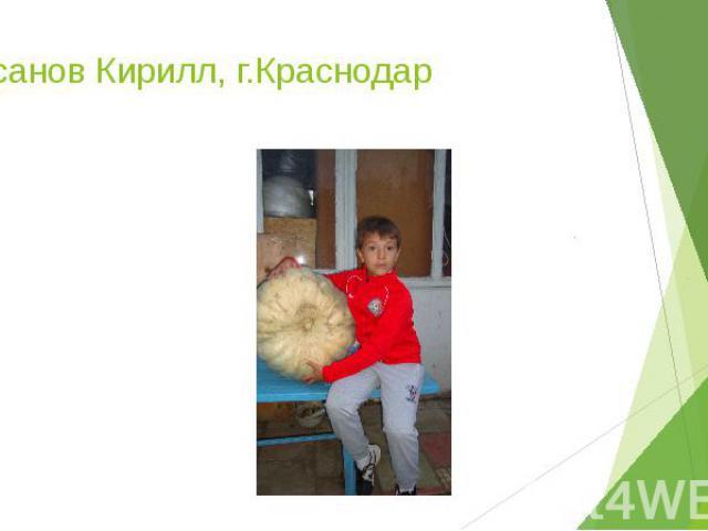Мисанов Кирилл, г.Краснодар