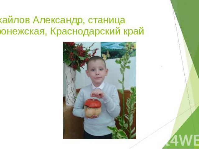 Михайлов Александр, станица Воронежская, Краснодарский край
