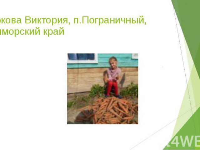 Баркова Виктория, п.Пограничный, Приморский край